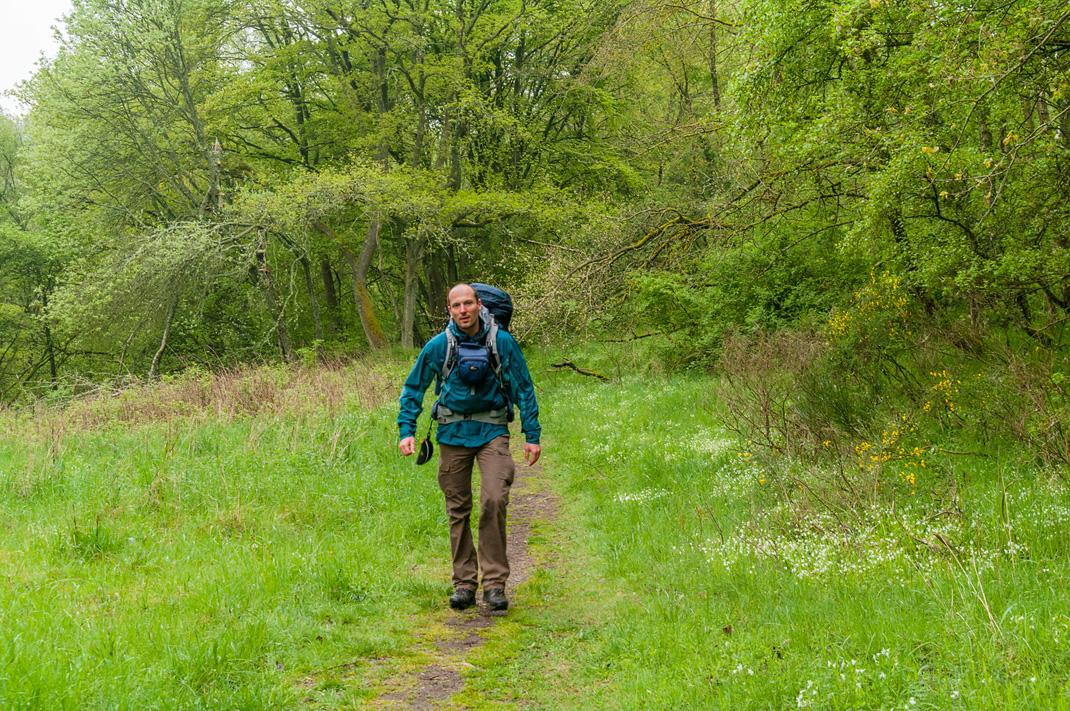 Eifel Wandern auf dem Wildnis Trail im Nationalpark