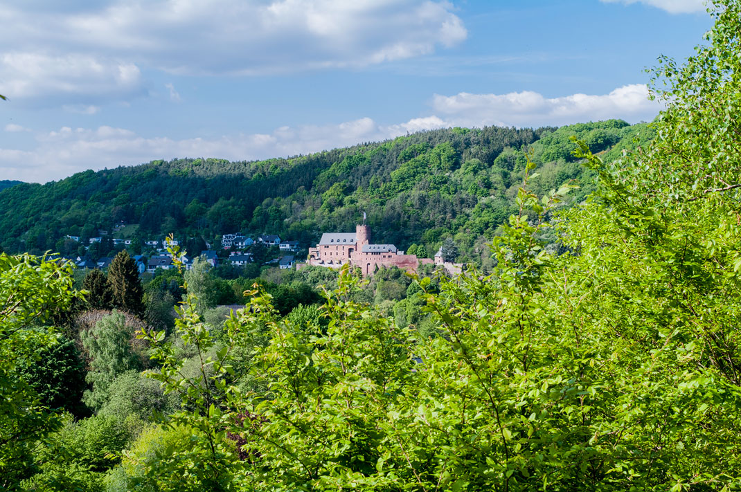 Wildnis Trail Eifel im Nationalpark Burg Hengebach