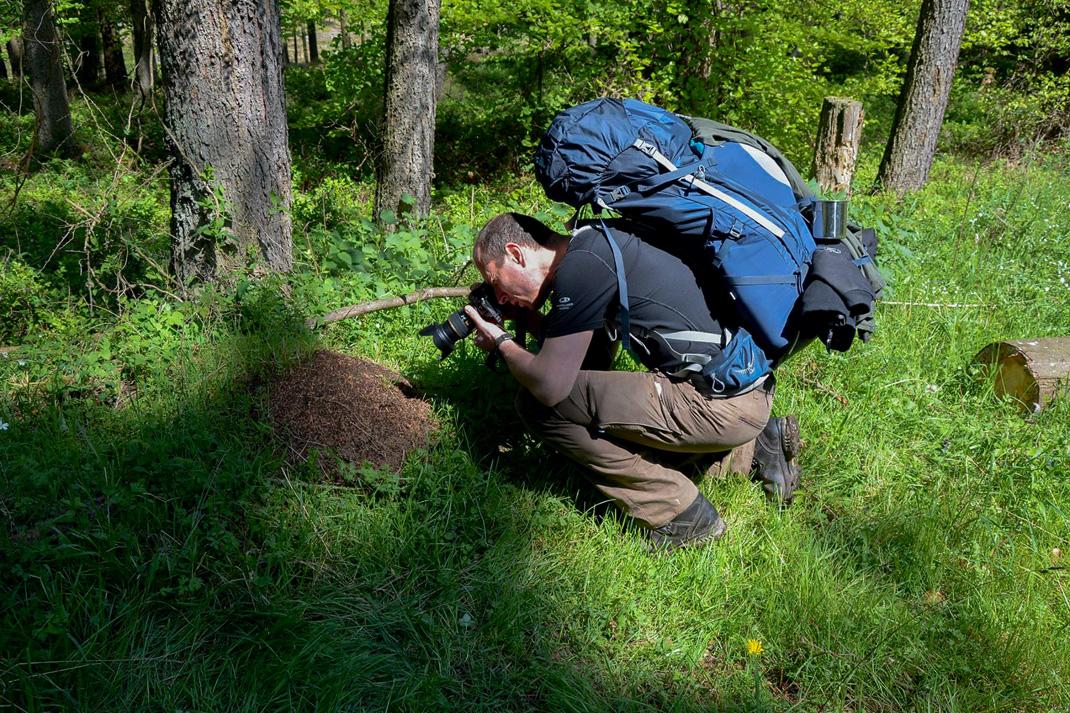 Wildnis Trail Eifel Fotografiereise