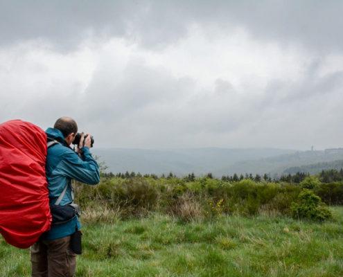 Wildnis-Trail vierte Etappe Nationalpark Eifel