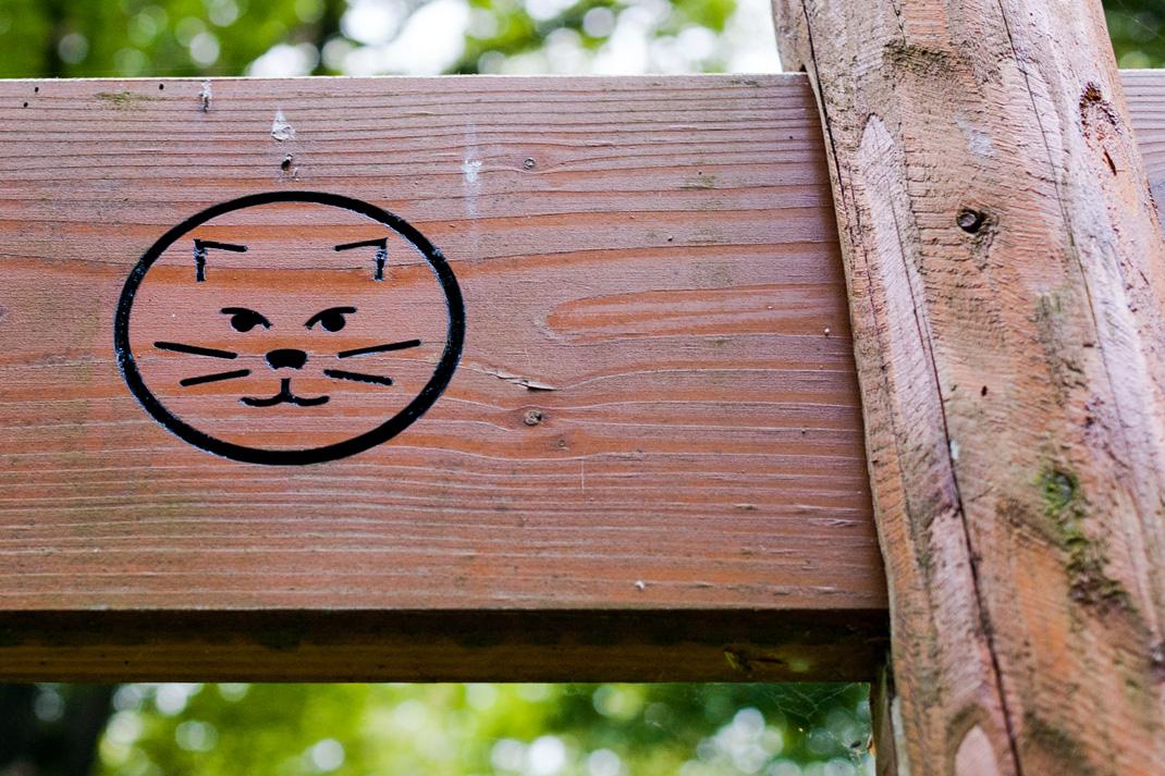 Wildnis Trail Eifel Wildkatzen Wandersymbol