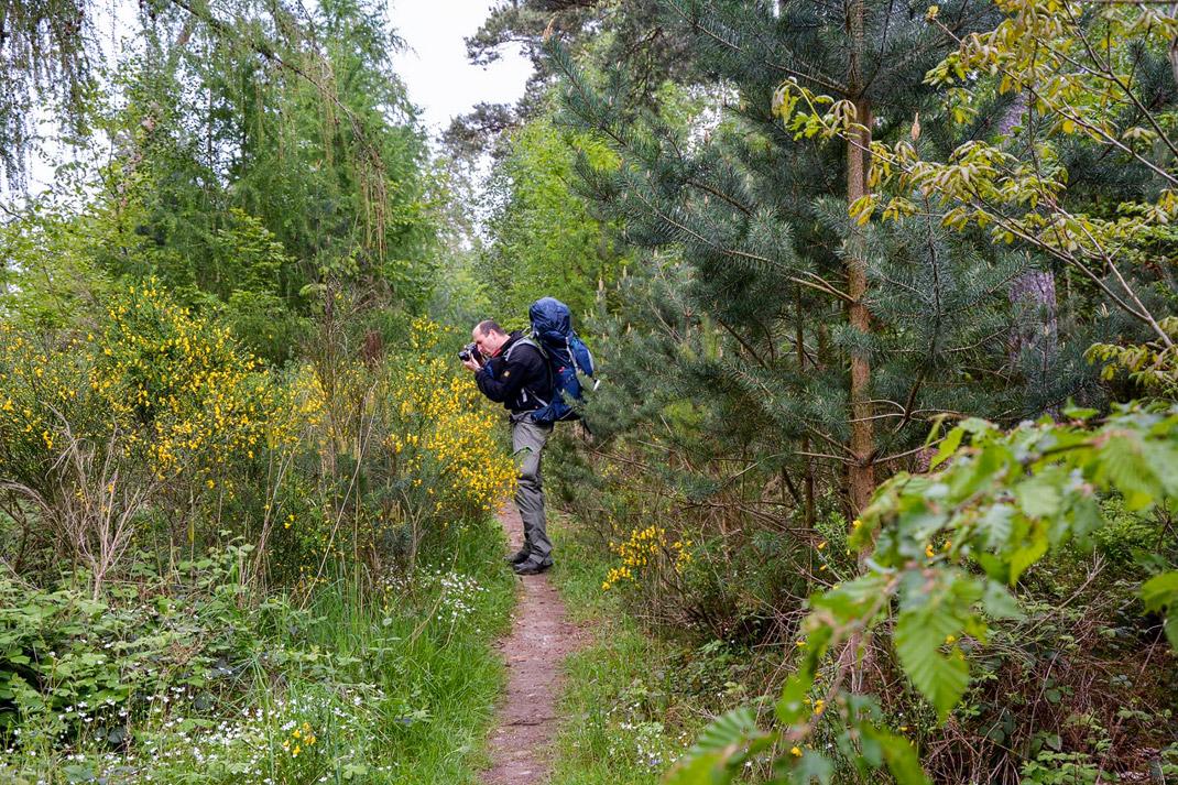 Wildnis Trail Eifel Fotografieren