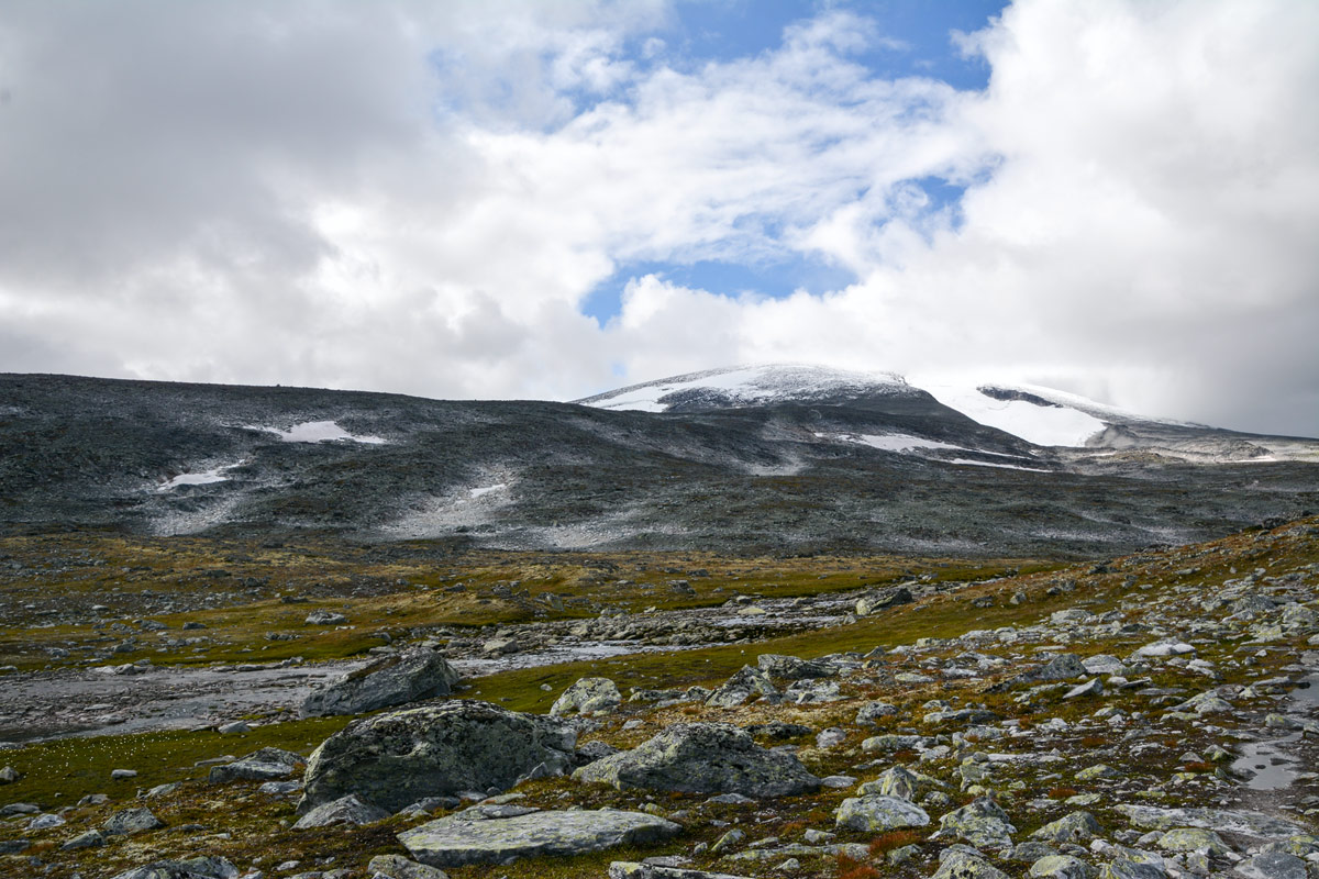 Foto Adventskalender, Trekking, Dovrefjell National Park, Norwegen