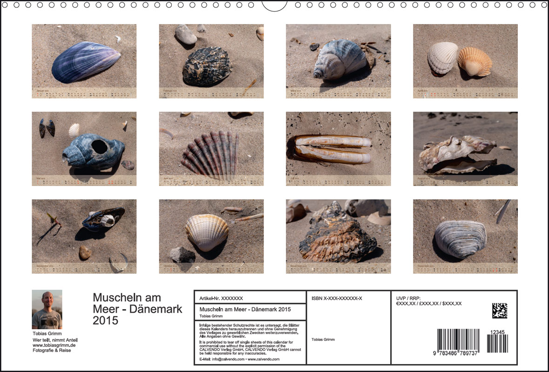 Kalender,Muscheln am Meer, 2015, Blåvand, Jütland, Dänemark