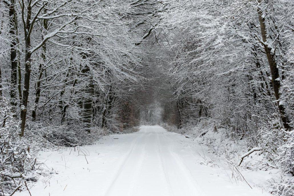 Winterwanderung, Schnee, Wald, Eifel